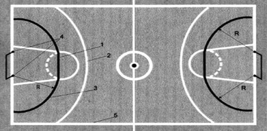 Схема спортивного зала